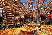新埔~柿餅節:DPP_11671.jpg