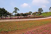 大溪花海農場:DPP_0927.JPG