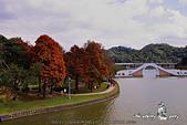 大湖公園:DPP_14940.jpg
