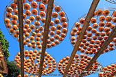 新埔~柿餅節:DPP_11667.jpg