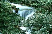大屯山瀑布:IMG_0554