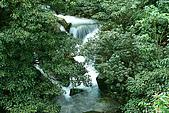 大屯山瀑布:IMG_0555