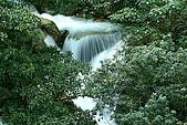 大屯山瀑布:IMG_0556