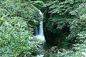 大屯山瀑布:IMG_0557