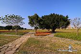 大臺北都會公園:DPP_15040.jpg