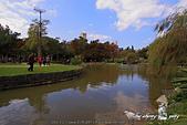 大湖公園:DPP_14959.jpg