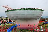 2014_新社花海節 :DPP_14415.jpg