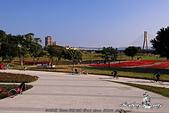 大臺北都會公園:DPP_15035.jpg
