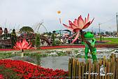 2014_新社花海節 :DPP_14406.jpg