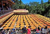 新埔~柿餅節:DPP_11674.jpg