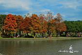 大湖公園:DPP_14943.jpg