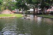 嘉義公園:IMG_3030.JPG