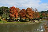 大湖公園:DPP_14944.jpg
