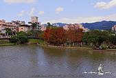 大湖公園:DPP_14955.jpg