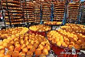 新埔~柿餅節:DPP_11670.jpg
