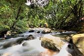 溪流:DPP_11367.jpg