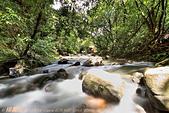 溪流:DPP_11369.jpg