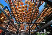 新埔~柿餅節:DPP_11673.jpg