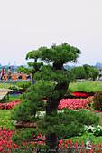 2014_新社花海節 :DPP_14418.jpg