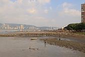 2012/10/14_八里左岸:DPP_9647.jpg