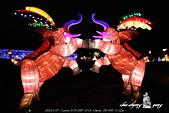 2015_台北燈會:DPP_15244.jpg
