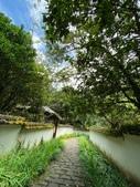 20200703『拉拉山深度3日』  神木、明池、水蜜桃 :20200705拉拉山 (58).jpg
