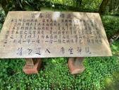 20200703『拉拉山深度3日』  神木、明池、水蜜桃 :20200705拉拉山 (62).jpg