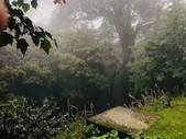 20200528大雪山國家森林遊樂區:2020528~30三日遊_200530_0012.jpg