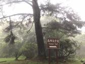20200528大雪山國家森林遊樂區:2020528~30三日遊_200530_0013.jpg