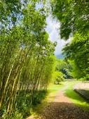 20200703『拉拉山深度3日』  神木、明池、水蜜桃 :20200705拉拉山 (83).jpg