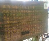 20200703『拉拉山深度3日』  神木、明池、水蜜桃 :20200705拉拉山 (111).jpg