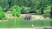 20200703『拉拉山深度3日』  神木、明池、水蜜桃 :20200705拉拉山 (128).jpg