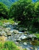 20200703『拉拉山深度3日』  神木、明池、水蜜桃 :20200705拉拉山 (113).jpg