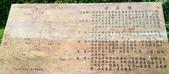 20200703『拉拉山深度3日』  神木、明池、水蜜桃 :20200705拉拉山 (142).jpg