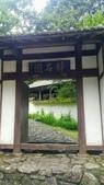 20200703『拉拉山深度3日』  神木、明池、水蜜桃 :20200705拉拉山 (132).jpg