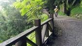 20200703『拉拉山深度3日』  神木、明池、水蜜桃 :20200705拉拉山 (30).jpg