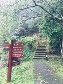 20200528大雪山國家森林遊樂區:2020528~30三日遊_200530_0009.jpg