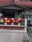 20200703『拉拉山深度3日』  神木、明池、水蜜桃 :20200705拉拉山 (40).jpg