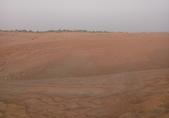 20180901杜拜驚險刺激的沙漠衝沙(Desert Safari):20180901 杜拜衝沙騎駱駝BBQ (19).jpg