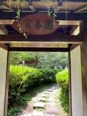 20200703『拉拉山深度3日』  神木、明池、水蜜桃 :20200705拉拉山 (59).jpg