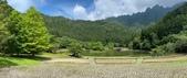 20200703『拉拉山深度3日』  神木、明池、水蜜桃 :20200705拉拉山 (80).jpg