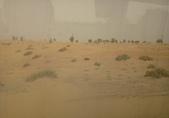 20180801Al Maha, A Luxury Collection Desert Resort:20180801 杜拜沙漠AL MAHA HOTEL (4).jpg