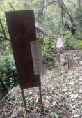 20210120北橫拉拉山 森林溪秘境 :20201029踩線團_201031_20.jpg