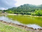 20200703『拉拉山深度3日』  神木、明池、水蜜桃 :20200705拉拉山 (43).jpg
