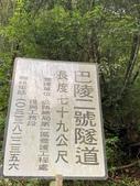 20200703『拉拉山深度3日』  神木、明池、水蜜桃 :20200705拉拉山 (164).jpg