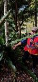 20210120北橫拉拉山 森林溪秘境 :2020.1029-1030_201031_4.jpg