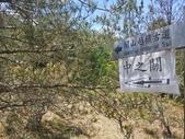 20200513南部橫貫公路-天池 中之關古道:051304 (10).jpg
