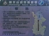 20200703『拉拉山深度3日』  神木、明池、水蜜桃 :20200705拉拉山 (25).jpg
