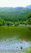20200703『拉拉山深度3日』  神木、明池、水蜜桃 :20200705拉拉山 (146).jpg