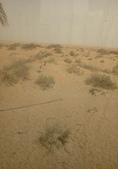 20180801Al Maha, A Luxury Collection Desert Resort:20180801 杜拜沙漠AL MAHA HOTEL (5).jpg